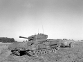 cromwell_churchill_36
