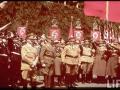 nazi-1_115_1