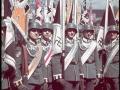 nazi-1_54_1