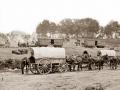 pulling-horses-wagons