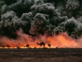"""Ahmadi Oil Fields, Kuwait, 1991Sandwiched between blackened sand and sky, camels search for untainted shrubs and water in the burning oil fields of southern Kuwait.  Their desperate foraging reflects the environmental plight of a region ravaged by the gulf war. Canby, Thomas Y. (August 1991)""""The first Gulf War taught us a new lesson in unconventional conflict. Saddam Hussain's army filled the skies of southern Kuwait with black poignant smoke from the burning oil lines.  It was a powerful, debilitating symbol. And there was another.  McCurry, who was covering the war, saw camels running in terror from the fires.  Both images -whether of the fires or of the animals- were powerful representations of the chaos of that time.  Central to McCurry's reputation as a journalist is his discipline to wait, and to search, and then to recognize the most telling image.  The juxtaposition of the fire and smoke and camels running amok creates an icon of that war."""" - Phaidon 55National Geographic, Vol. 180, No. 2, 2-3, 2005, August 1991, The Persian Gulf: After the StormPhaidon, 55, Iconic Images, final book_iconic, final print_milan  Sandwiched between blackened sand and sky, camels search for untainted shrubs and water in the burning oil fields of southern Kuwait.  Their desperate foraging reflects the environmental plight of a region ravaged by the gulf war. Canby, Thomas Y. (August 1991).  """"The first Gulf War taught us a new lesson in unconventional conflict. Saddam Hussain's army filled the skies of southern Kuwait with black poignant smoke from the burning oil lines.  It was a powerful, debilitating symbol. And there was another.  McCurry, who was covering the war, saw camels running in terror from the fires.  Both images -whether of the fires or of the animals- were powerful representations of the chaos of that time.  Central to McCurry's reputation as a journalist is his discipline to wait, and to search, and then to recognize the most telling image.  The juxtaposition of th"""