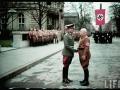 nazi-1_77_1